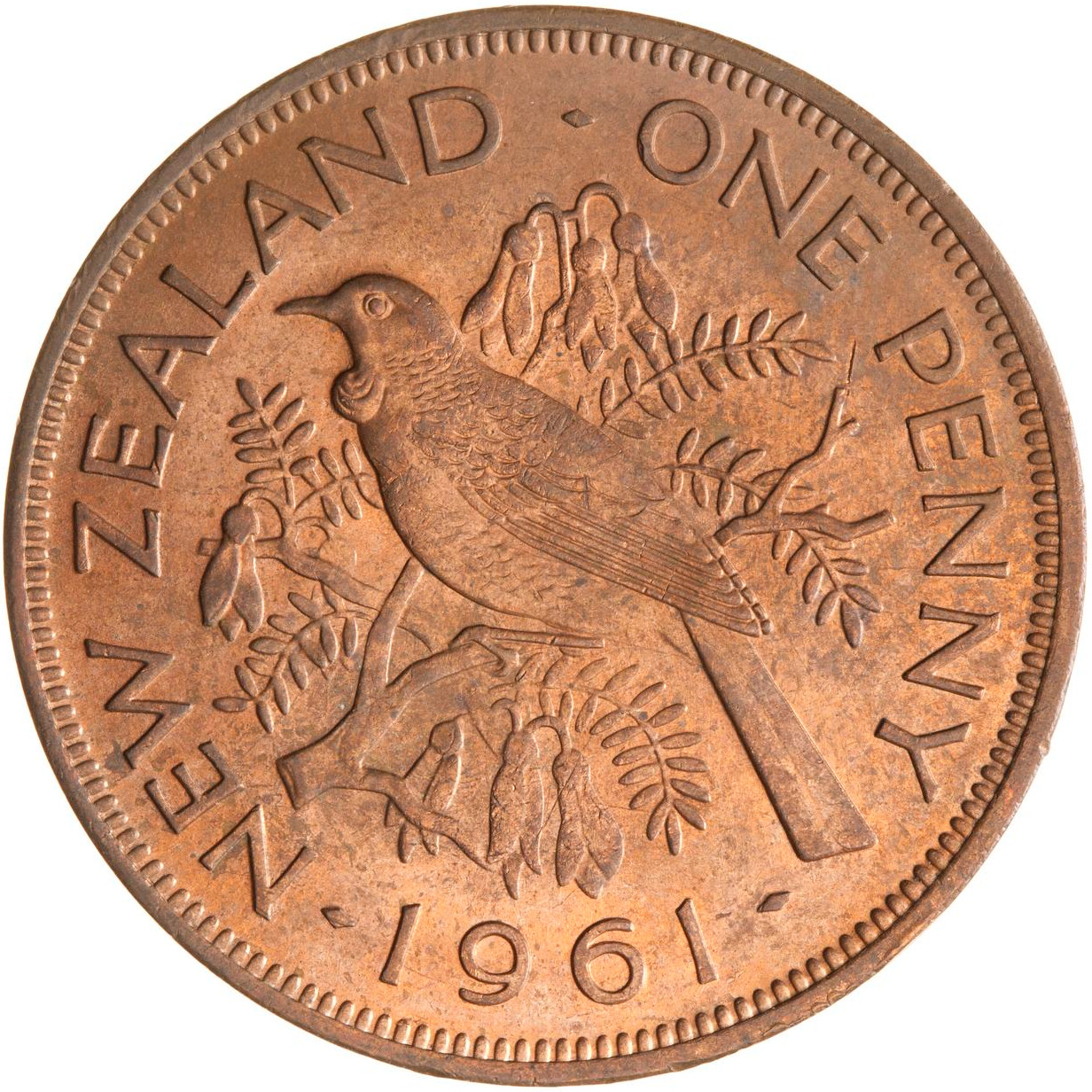 Penny 1961: Photo Coin - 1 Penny, New Zealand, 1961