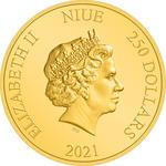 Niue / Gold Ounce 2021 Turtle - obverse photo