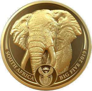South Africa / Gold Ounce 2019 Big Five - Elephant - obverse photo