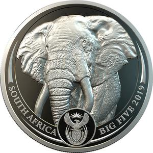 South Africa / Platinum Ounce 2019 Big Five - Elephant - obverse photo