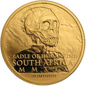 South Africa / Gold Half Ounce 2019 Paranthropus Robustus - obverse photo