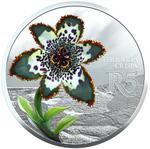 South Africa / Silver Ounce 2017 Starfish Lily - reverse photo