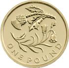 United Kingdom / One Pound 2014 Scotland - reverse photo