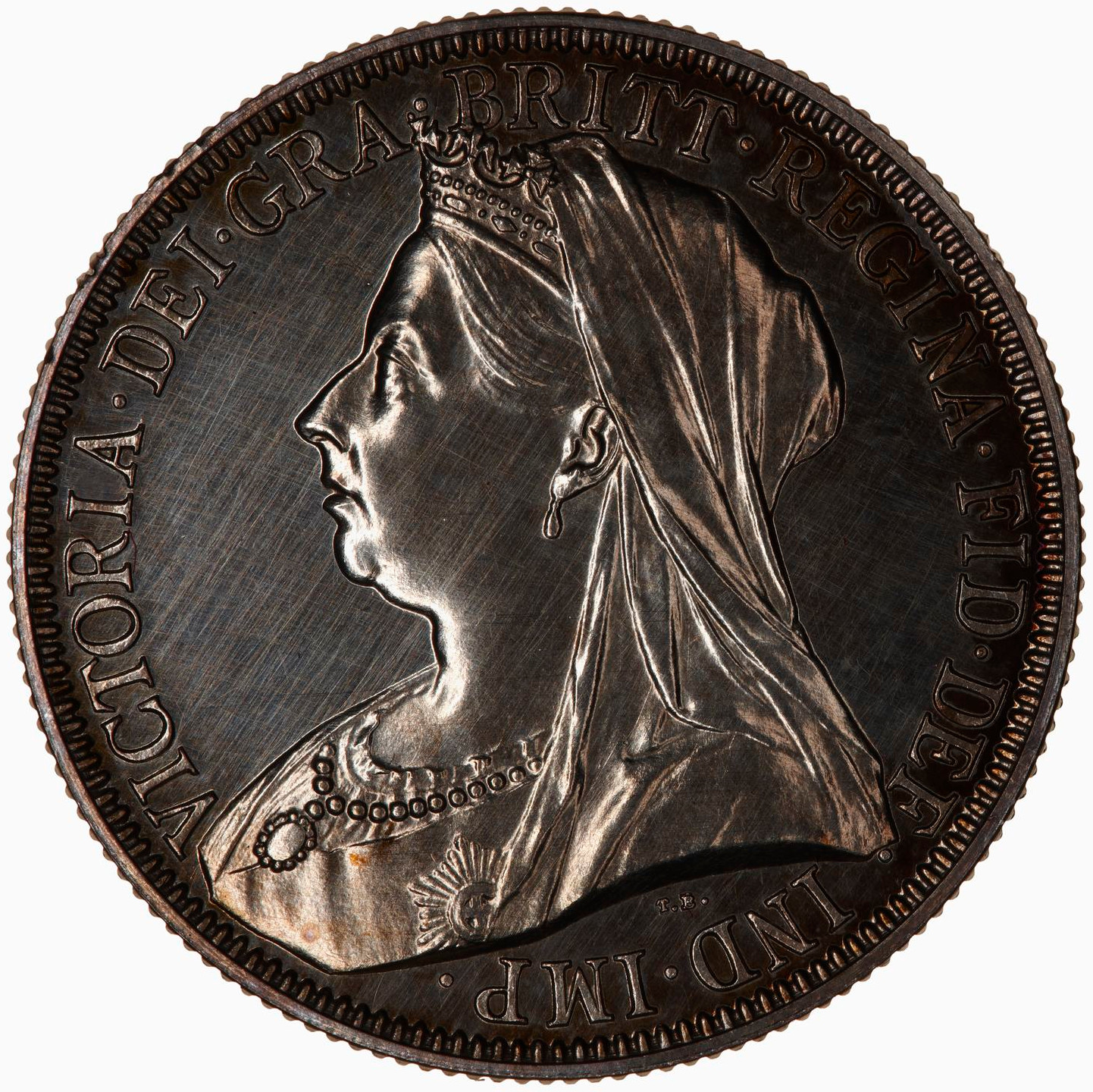 Florin 1893: Photo Proof Coin - Florin, Queen Victoria, Great Britain, 1893